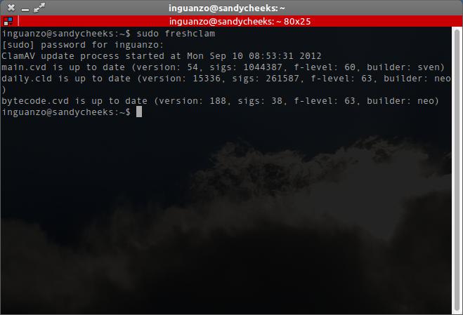 El comando sudo freshclam funcionando correctamente.