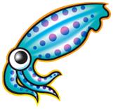 squid caché web proxy