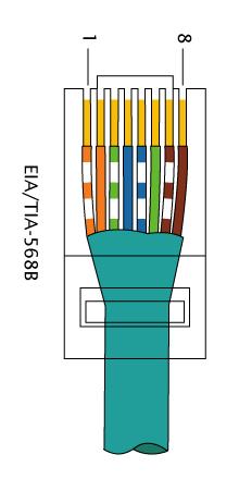 RJ-45 568B