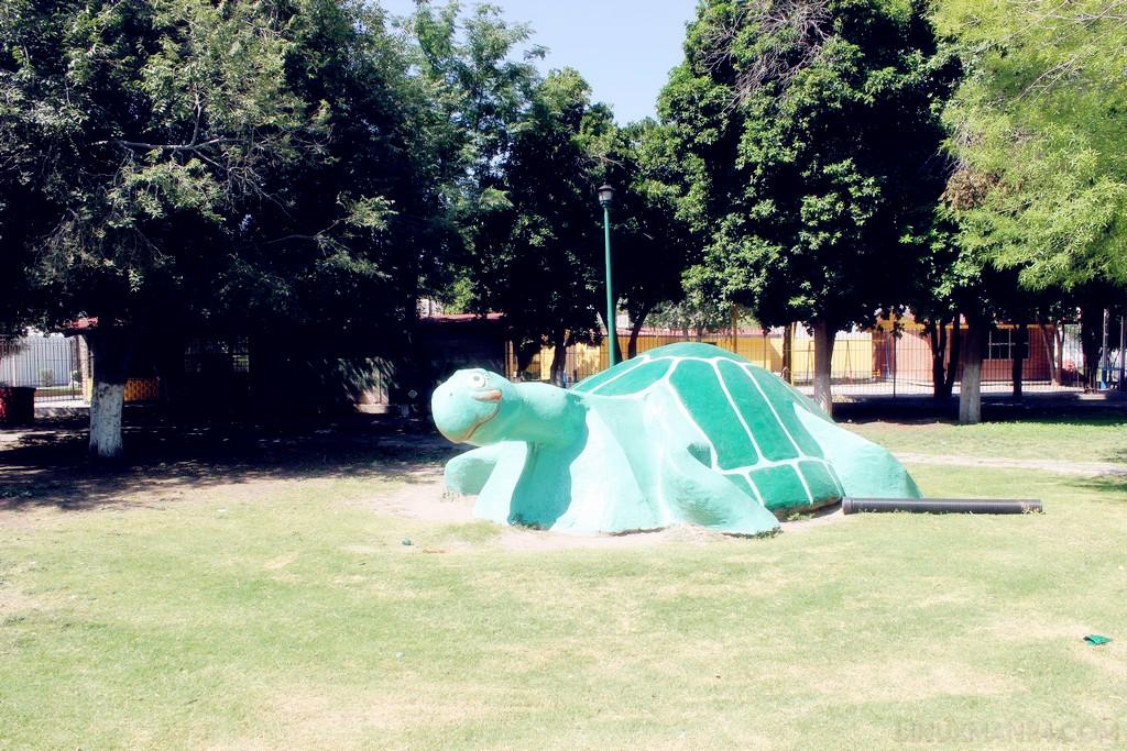 Plaza de la Tortuga en Torreón Jardín