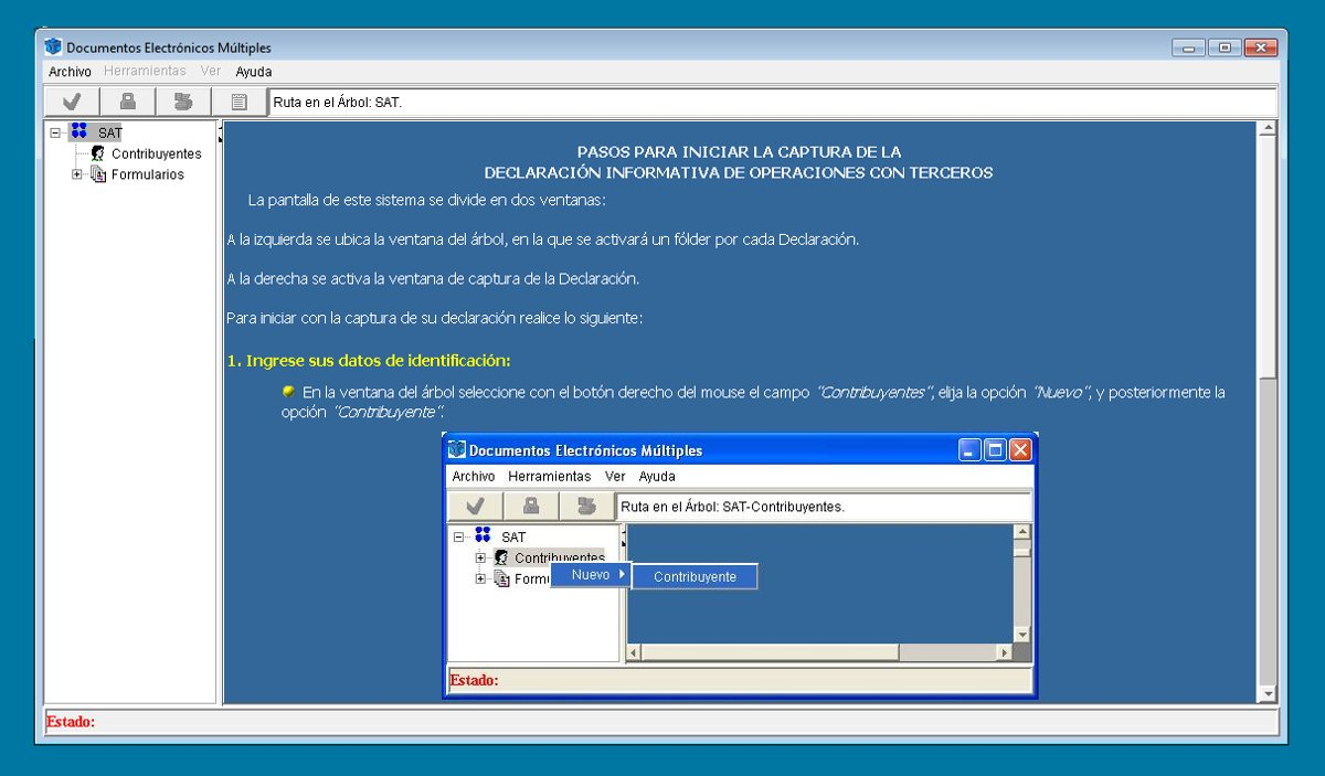 Programa DIOT instalado